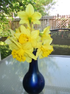 Daffodils from Trader Joe's. They're may not be as elegant as Phyllis Diller's red roses, but they speak to my heart and make me smile!