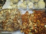 Mushrooms like you've never seen before